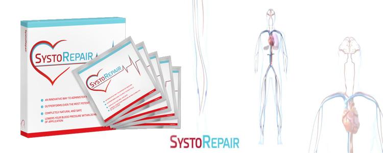 Apa yang orang-orang pikirkan tentang SystoRepair?